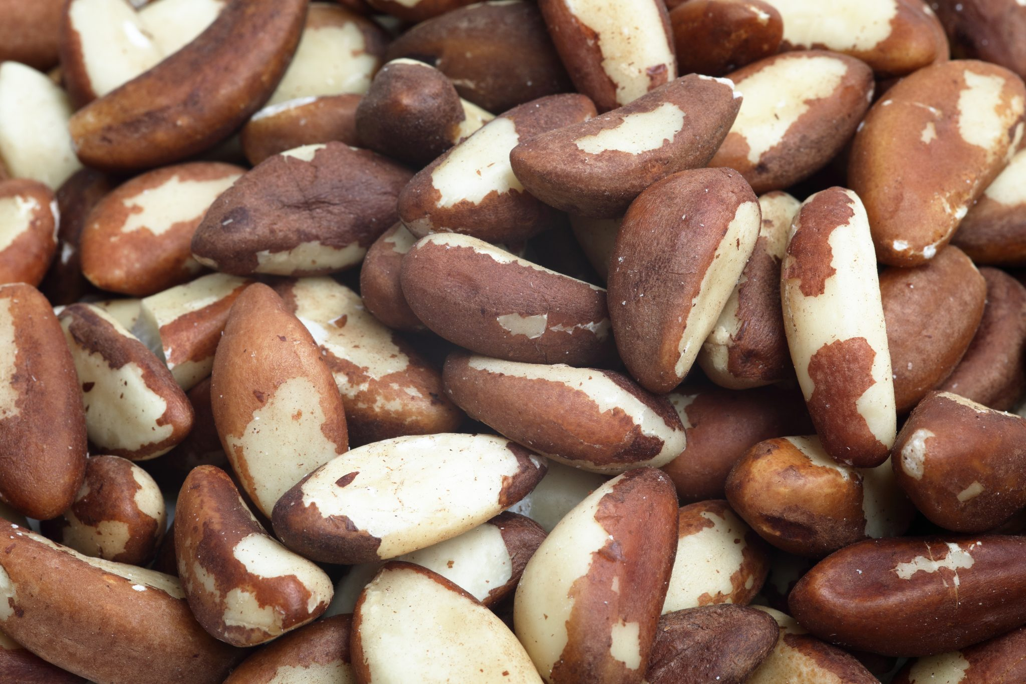 Chandras healthy vegan snack brazil nuts